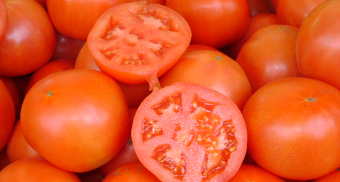 Tomate20151104040440